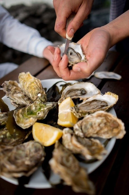 Opening Oysters, taste the Wild Atlantic Way, Seafood
