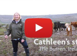 Cathleen's Story, Burren living