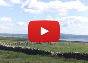 Cliffs of Moher to the Burren