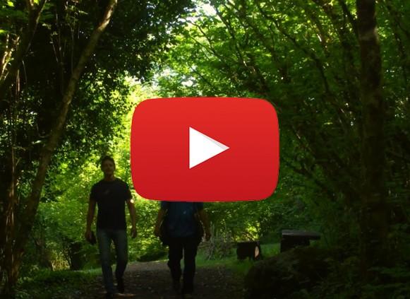 Visit the Burren, explore, Escape
