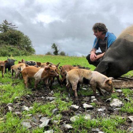 Piglets at Burren Pork, farm, free range