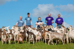 Staff with the goats on St.Tola's Goats Cheese Farm, nature, reconnect