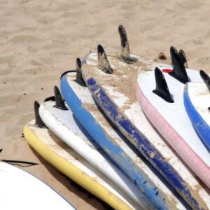 Surf boards on sandy beach, seashore, activity