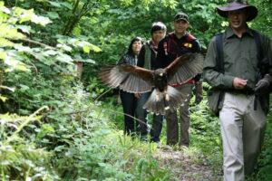 Hawk Walk, hiking adventure, fun